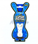 "Clé USB 4gb "" THE LAPINS CRETINS"""