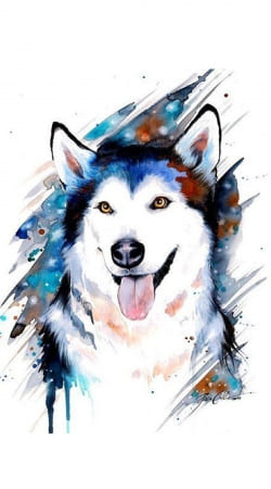 siberian husky watercolor