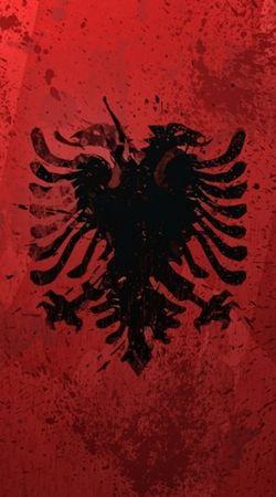 Albanie Painting Flag