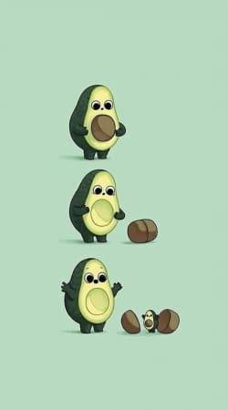 Avocado Born