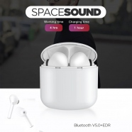 Bluetooth Earphones with Charge Dock