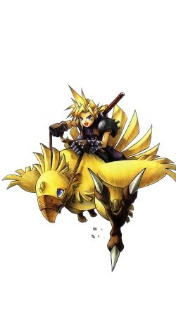 Chocobo and Cloud