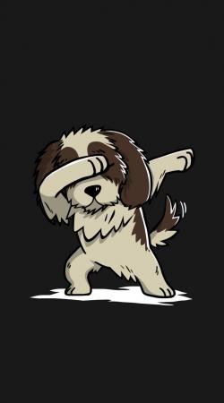 Dog Shih Tzu Dabbing