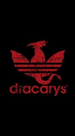 Dracarys x Adidas Joke