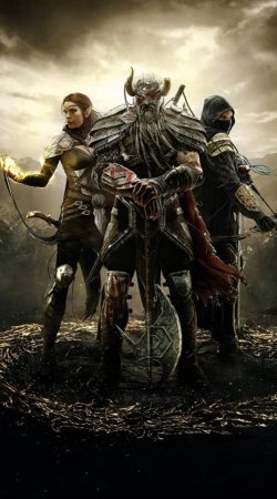 Elder Scrolls Knight
