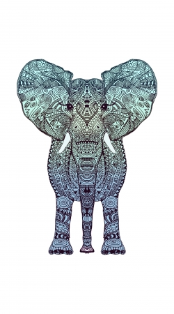 Artwork Elephant Mint do Samsung Galaxy ACE 2 i8160