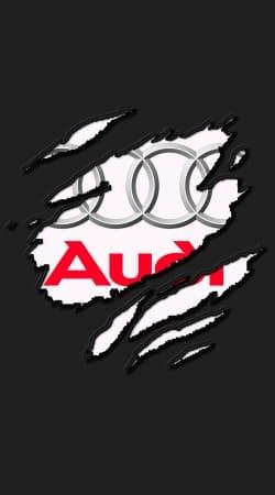 Fan Driver Audi GriffeSport