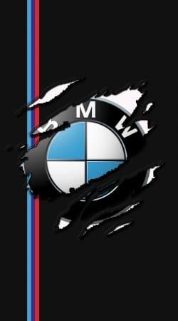 Fan Driver Bmw GriffeSport