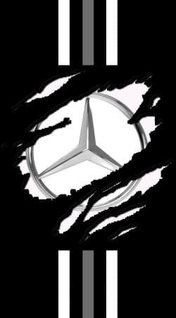Fan Driver Mercedes GriffeSport