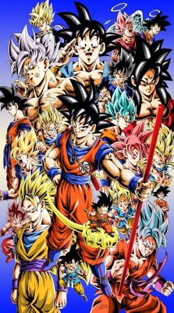 Kakarot Goku Evolution