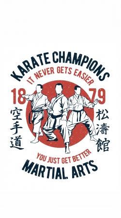 Karate Champions Martial Arts