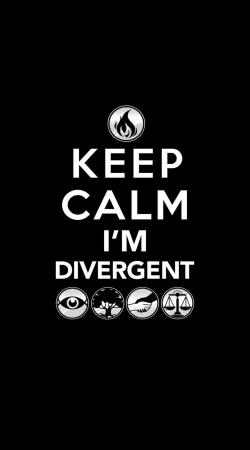 Keep Calm Divergent Faction
