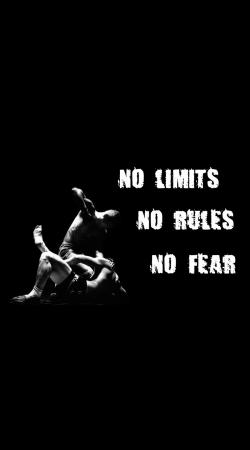 MMA No Limits No Rules No Fear