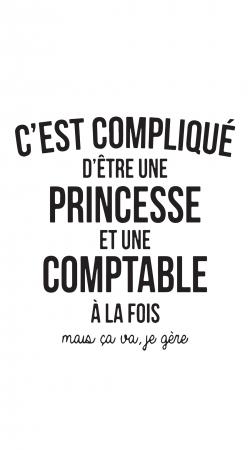 Princesse et comptable
