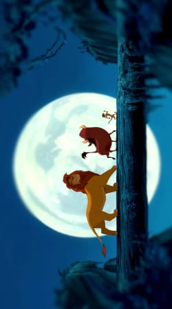 Simba Pumba Timone