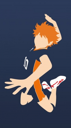 Volleyball Haikyuu Shoyo Hinata