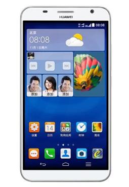 accessoire Huawei Ascend GX1